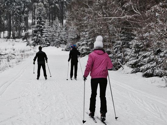 ski-de-fond-1