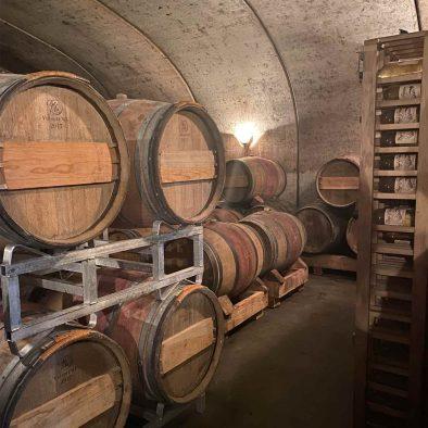 Vignoble cave à vin 2